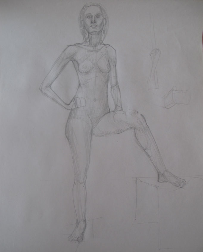Anatomy-longpose3