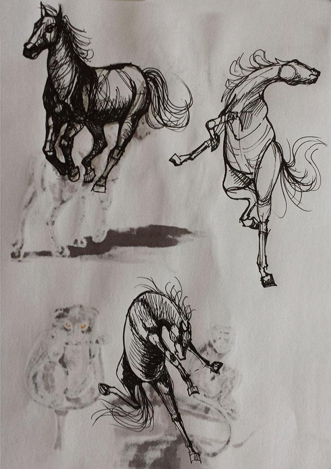Analytical-Horses
