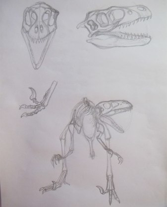 Skeleton redrawn, plus skull research.