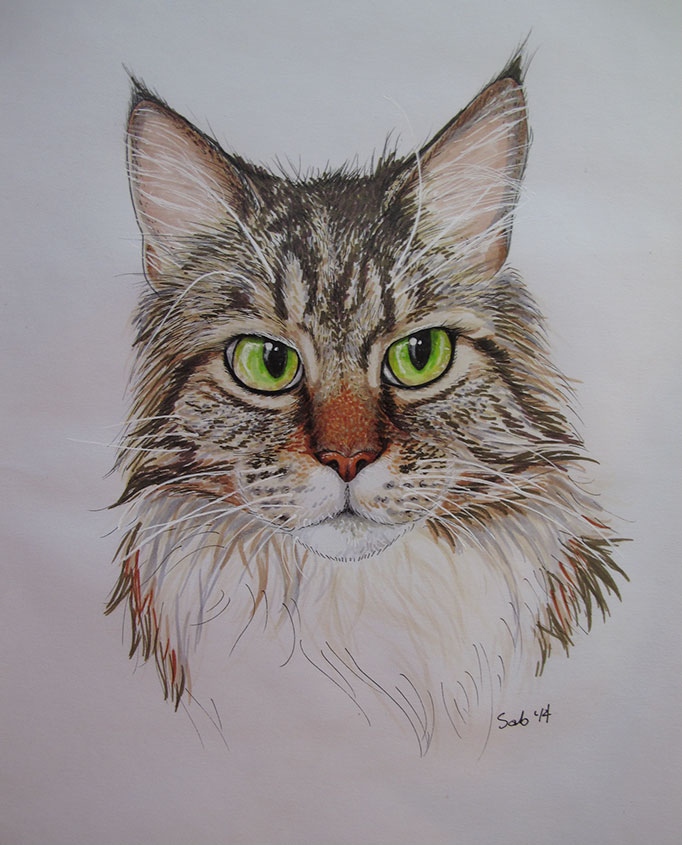 CatPortrait-Roosevelt-Final