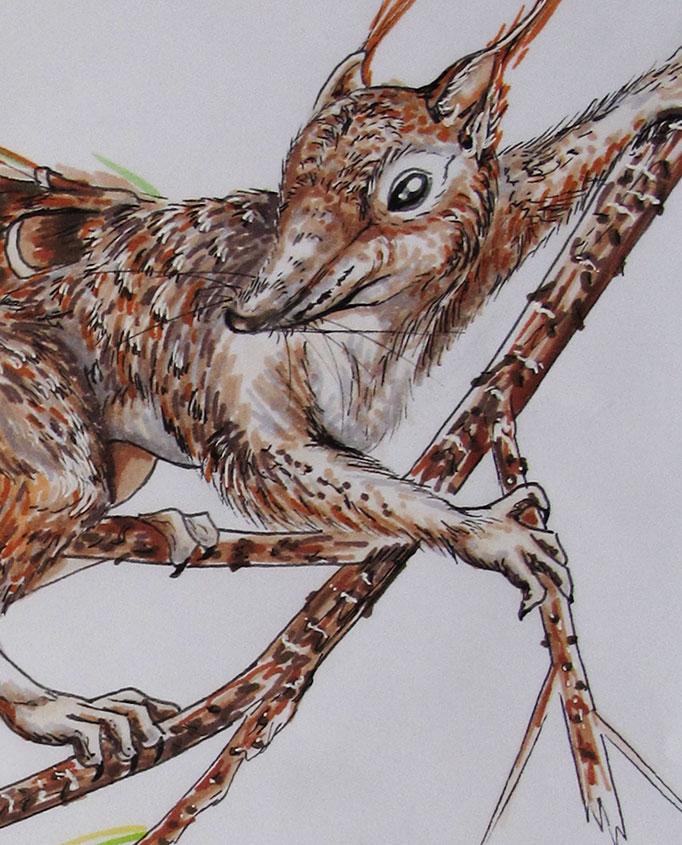 NatureSketching-CreatureDesign-detail