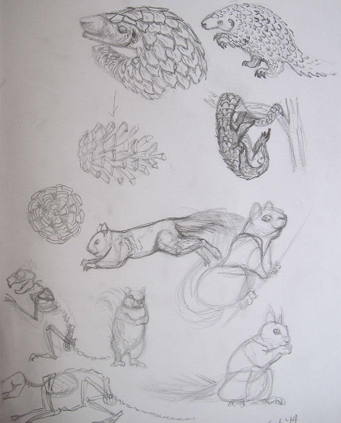 NatureSketching-CreatureDesign1