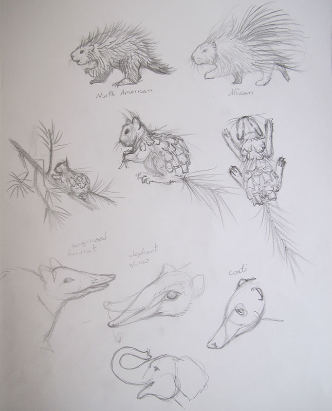NatureSketching-CreatureDesign2