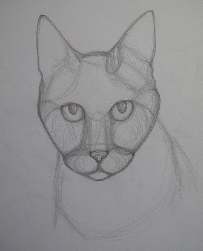 CatPortrait-Topaze-Sketch