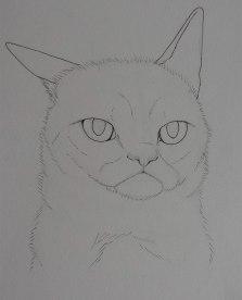 Grumpy Lineart