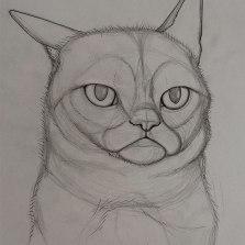 Grumpy Sketch