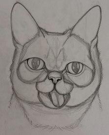 Bub Sketch